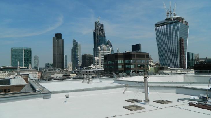 Roofing Landscape