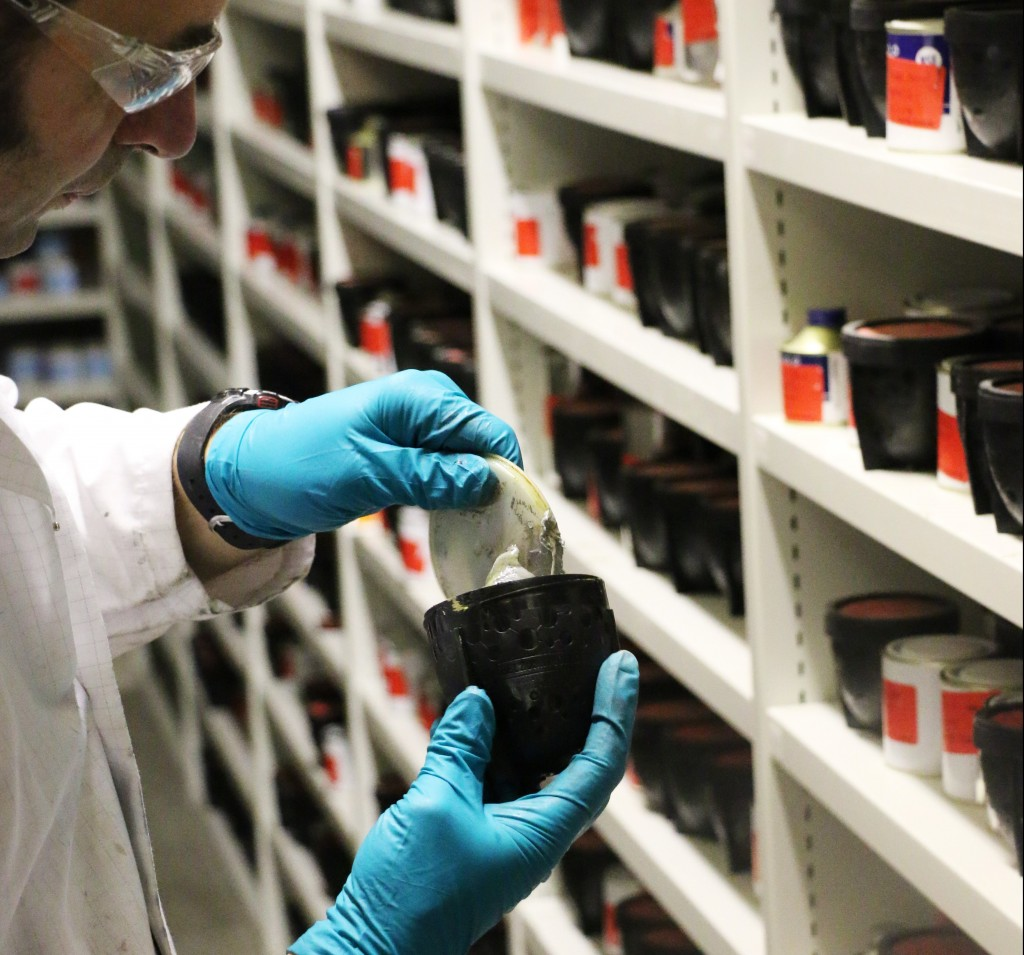 Quality from Science to Solution - Belzona Blog